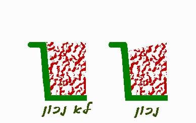 העמדה ומיקום בונסאי בעציץ 24