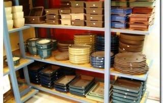 גלריית מוצרים לבונסאי 24
