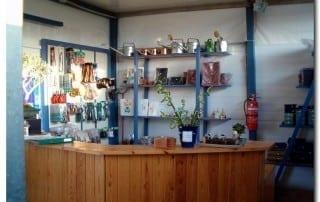 גלריית מוצרים לבונסאי 28